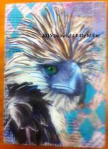 Eagle Kitty