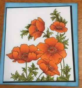 Teresa Orange Poppy